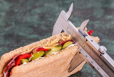 ¿Sabes qué es el metabolismo basal y cómo influye en el sobrepeso?
